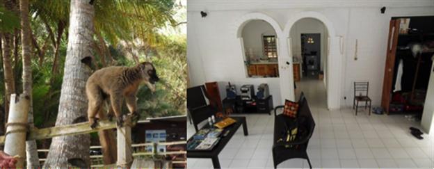 Mayotte-echange-de-maison-animaux-maison-insolite